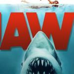 Duiker met GoPro aangevallen door grote witte haai