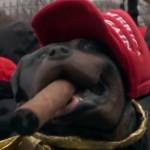 Triumph the Insult Comic Dog was ook bij Trump's inauguratie