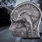 What I've Learned: hoe het internet je brainpower beïnvloed