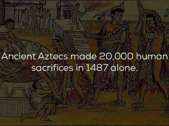 factspics (20)