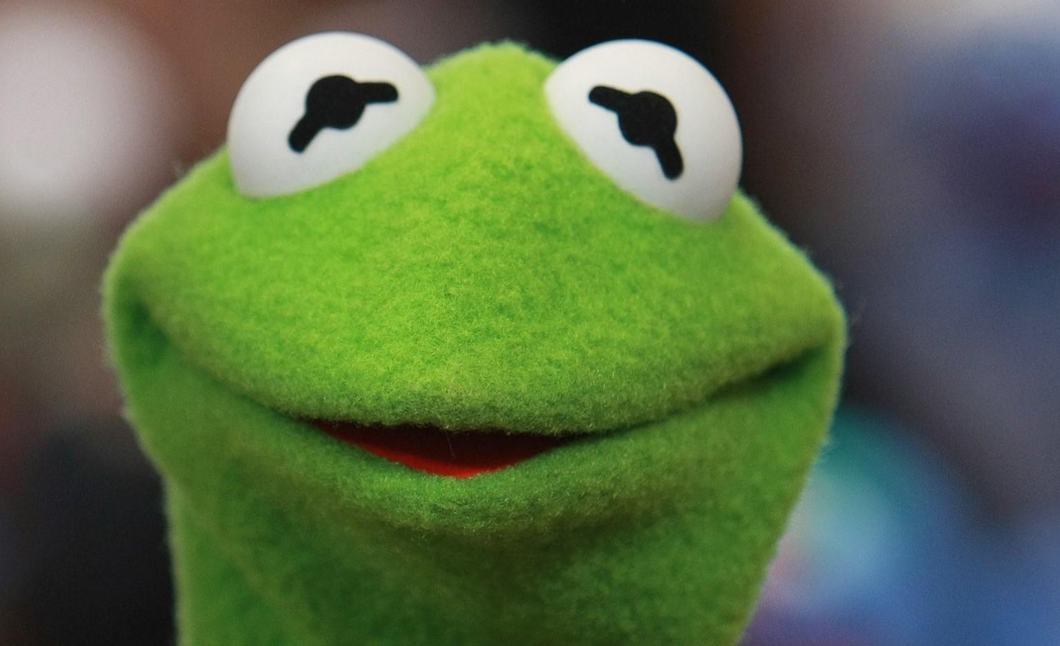 kermit de kikker is na een jarenlange drugsverslaving