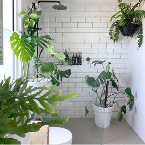 planten in badkamer met witte tegels